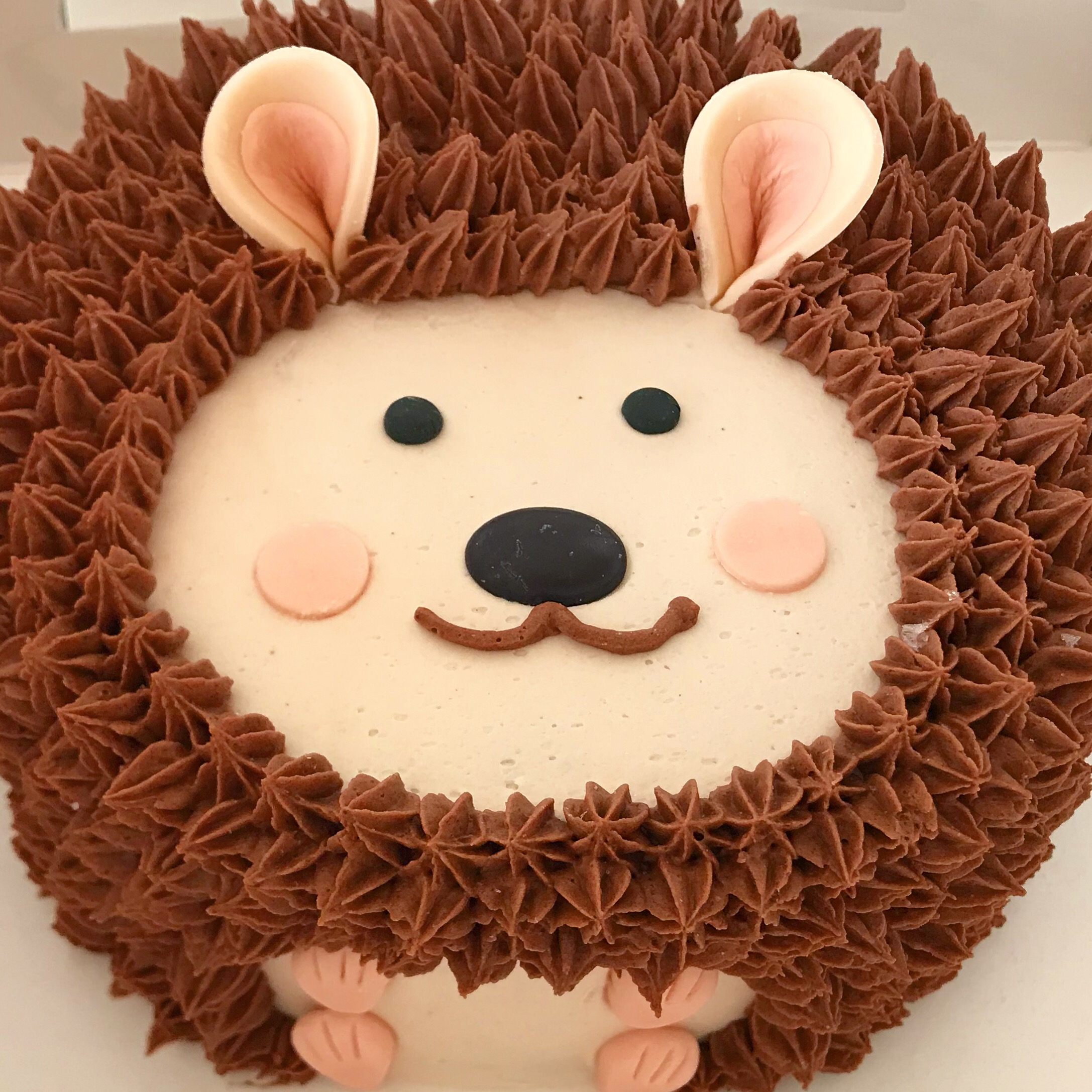 Pleasing Adorable Hedgehog Cake The Cupcake Delivers Funny Birthday Cards Online Overcheapnameinfo